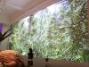 Creata una parete natura grazie alla vernice da proiezione